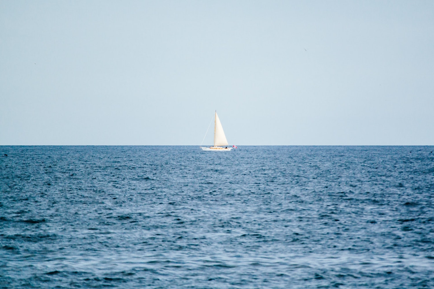 Self-love: don't get lost at sea